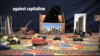Katze steigt in Kiste | Cat climbs in a box | european actionday against capitalism