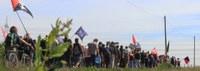 Corona, Spargel, Streik – Zur politischen Ökonomie von Arbeitskämpfen rumänischer Saisonarbeiter:innen in der deutschen Landwirtschaft