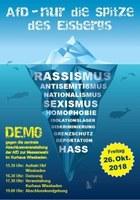 Demo: AfD-Nur die Spitze des Eisbergs!